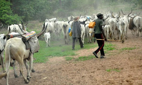 Herdsmen kill six in Benue community