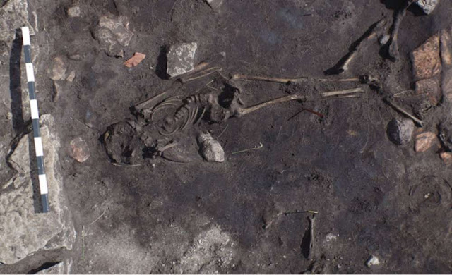 Archaeologists in Sweden uncover 5th century massacre