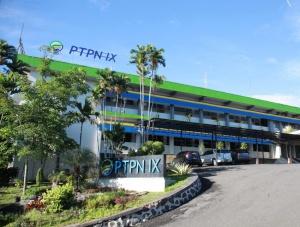 PTPN IX