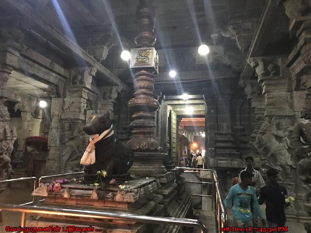 Padaleeswarar Temple Cuddalore