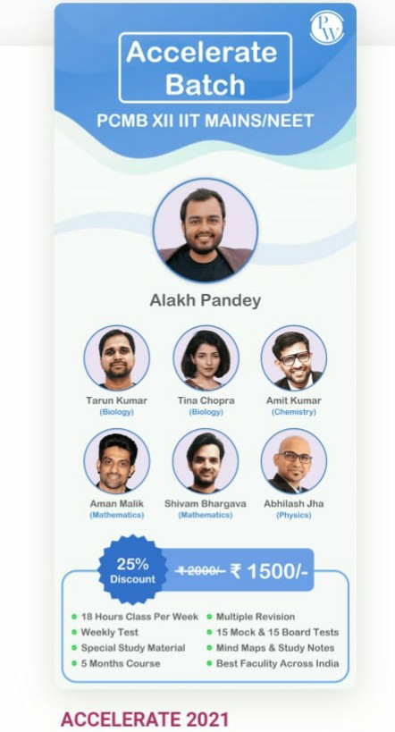 Why You Should Join Accelerate Batch or Why Not