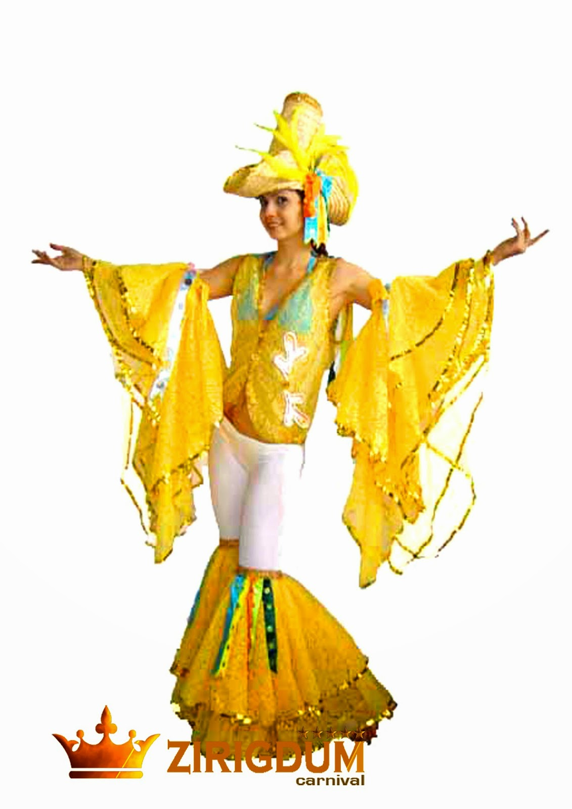 burlesque dress costumes kids costumes feather costumes circus party costumes dress costume feather carnivale costume feather headpieces brazilian ...  sc 1 st  Zirigdum Carnival Costumes & burlesque dress costumes kids costumes feather costumes circus ...