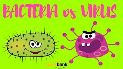 Karakteristik Bakteri dan Virus