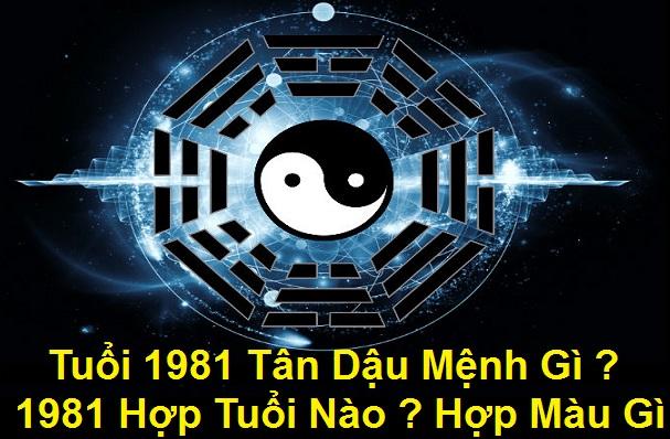 1991 Menh Gi