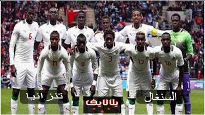 مشاهدة مباراة السنغال وتنزانيا بث مباشر اليوم