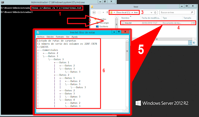 Microsoft Windows CMD: TREE listar Árbol de directorios. - tree c:\datos /a > c:\tree\tree.txt