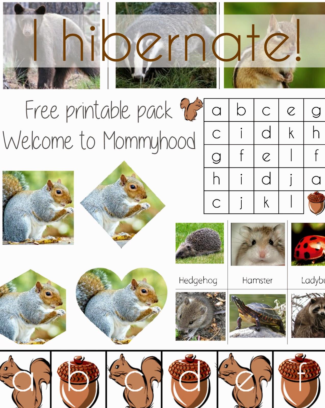 i hibernate printables welcome to mommyhood. Black Bedroom Furniture Sets. Home Design Ideas