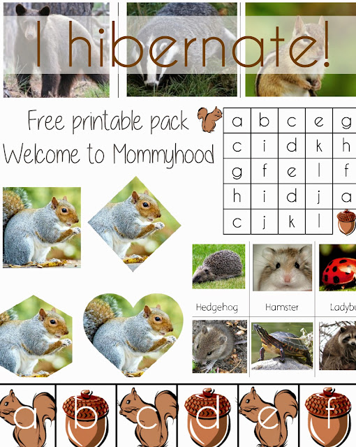 Science activities for preschoolers and toddlers: hibernation printables {Welcome to Mommyhood} #montessori, #scienceactivities