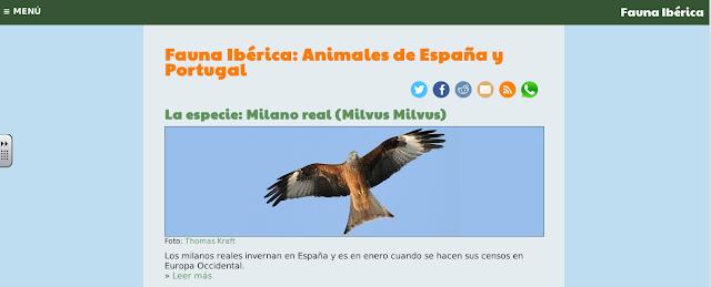 https://www.faunaiberica.org/