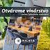 Otvorené vinárstvo počas Čajkovského vinobrania (14.9.2019)