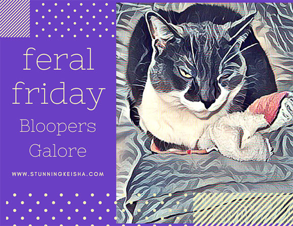 Feral Friday—Bloopers Galore