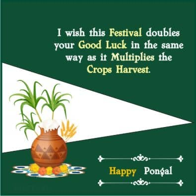 Pongal Quotes Hindi