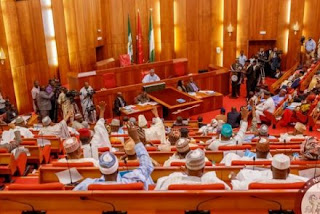 Senate Passes Bill to Enforce Inauguration of President, Vice-President at National Assembly