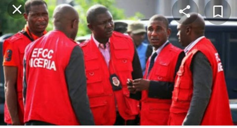 HEDA Urges Governor Ayade, EFCC to Probe Cross Rivers State Forestry Commission, Others for Illicit Trading in Forest Resources