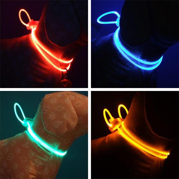 Colorful LED Pet Dog Collar Chain Luminous Light LED Dog Cat Night Light Collar