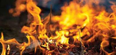 درس اكتشاف النار و تدجين الحيوانات المستوى السادس ابتدائي