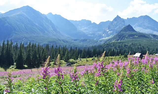Parque Nacional Tatras Polonia