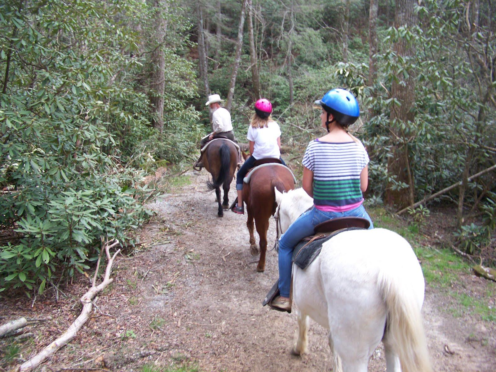 Horse Riding Girl Xxx