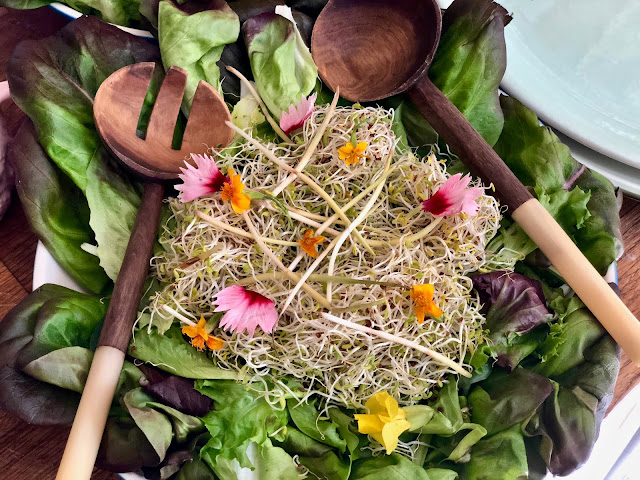 salad with alfalfa, popcorn shoots and edible flowers Botanic supper club and silver workshop with Emma Mitchell pic: Kerstin Rodgers/msmarmitelover.com