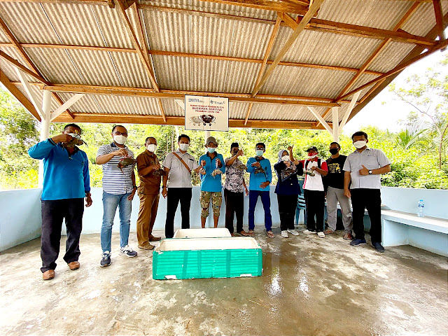 Dibudidayakan bersama PT Timah Tbk, Pokdakan Tuah Ketam Panen Puluhan Kilogram Kepiting