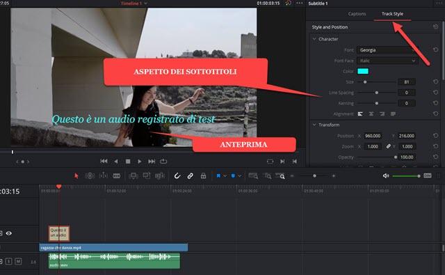 personalizzazione aspetto dei sottotitoli