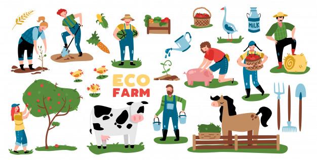 اسماء الاشياء في المزرعة باللغة الانجليزية