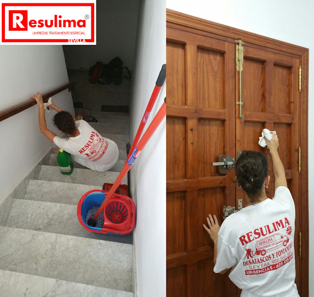 limpiezas y tratamientos especiales en Sevilla