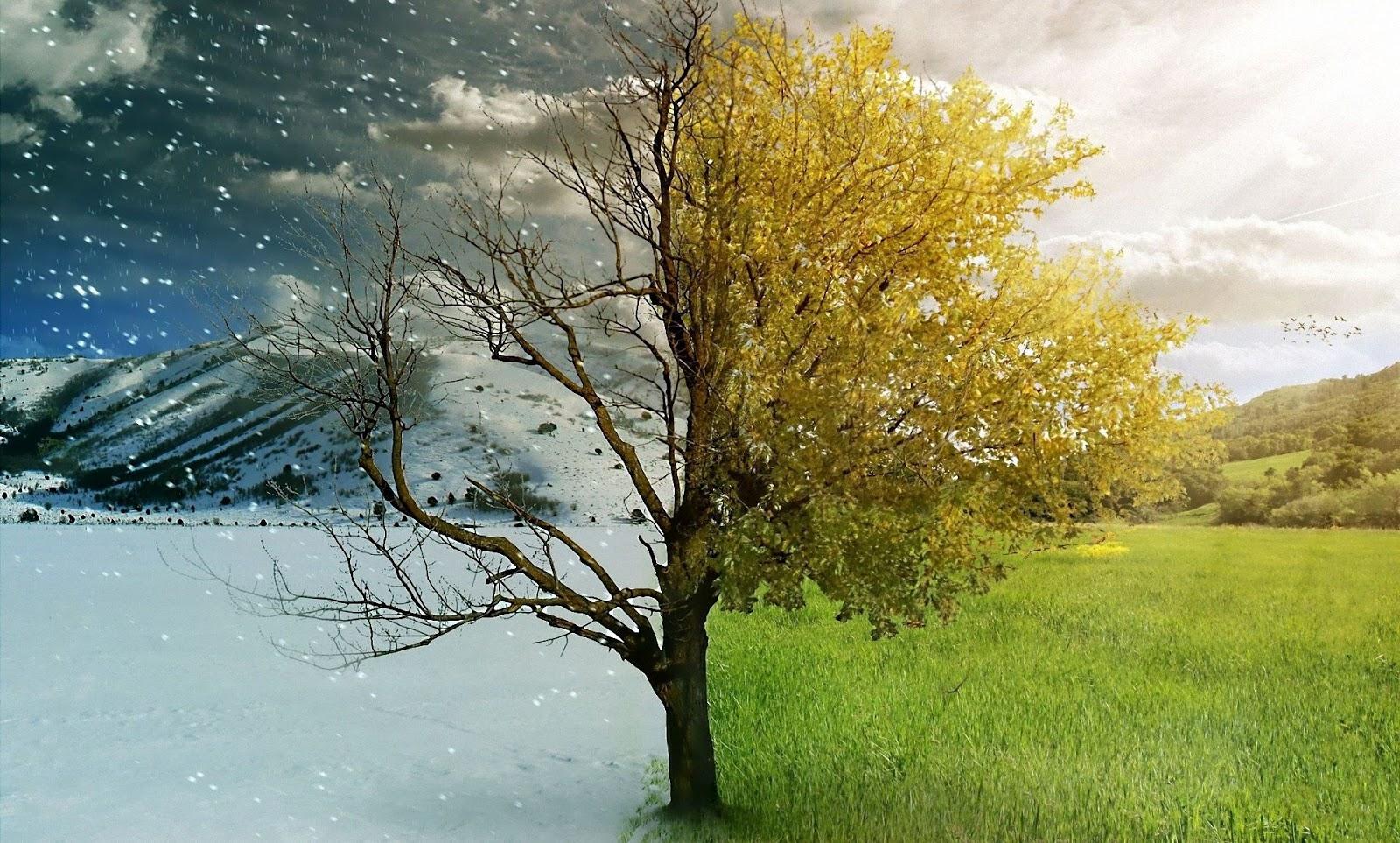 في الشتاء خمس وفي الصيف ثلاث