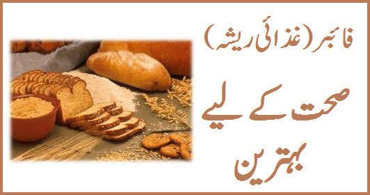fiber-in-urdu