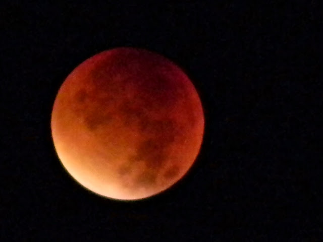satelita, krwawy księży, ciekawostki astronomiczne