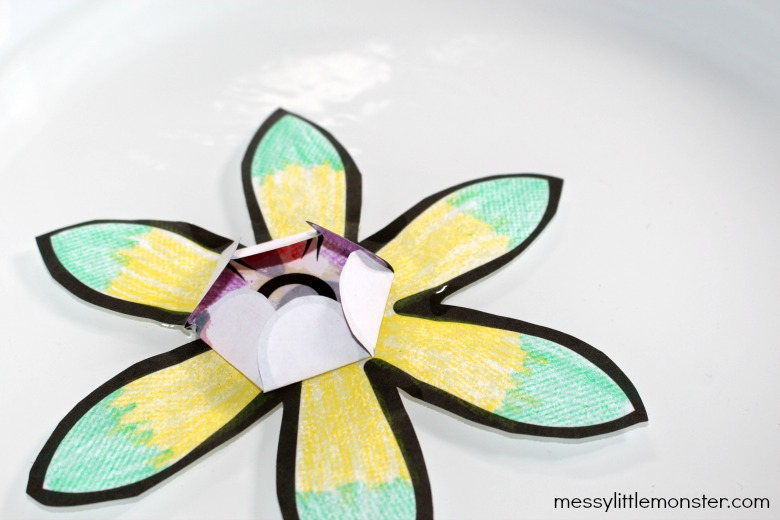 How to make blooming paper flowers for kids