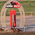 Markopoulo Park: Οι πέντε ιπποδρομίες που έκοψαν την ανάσα