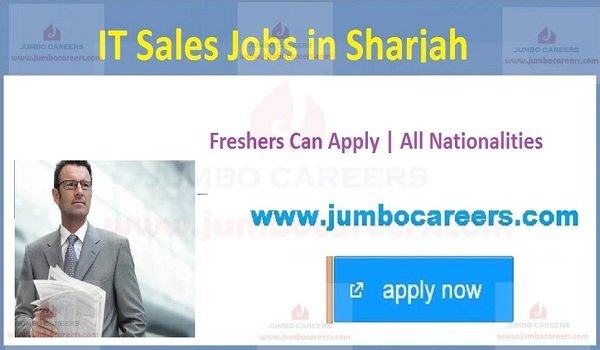 Available IT company jobs in UAE, IT Job openings in UAE,