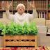 Bantah Tak Lapor, Habib Rizieq Cerita Disambangi Petugas Intelijen RI