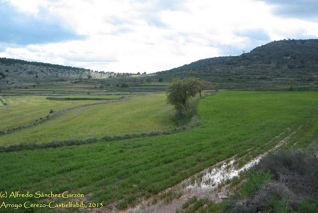 arroyo-cerezo-castielfabib-campo
