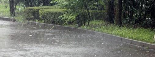 道路に降りつける雨