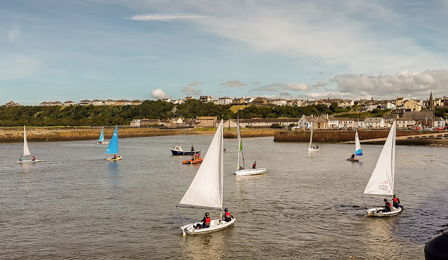 Photo of the Sea Cadets practicing their sailing skills
