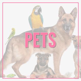 Pet-Theme
