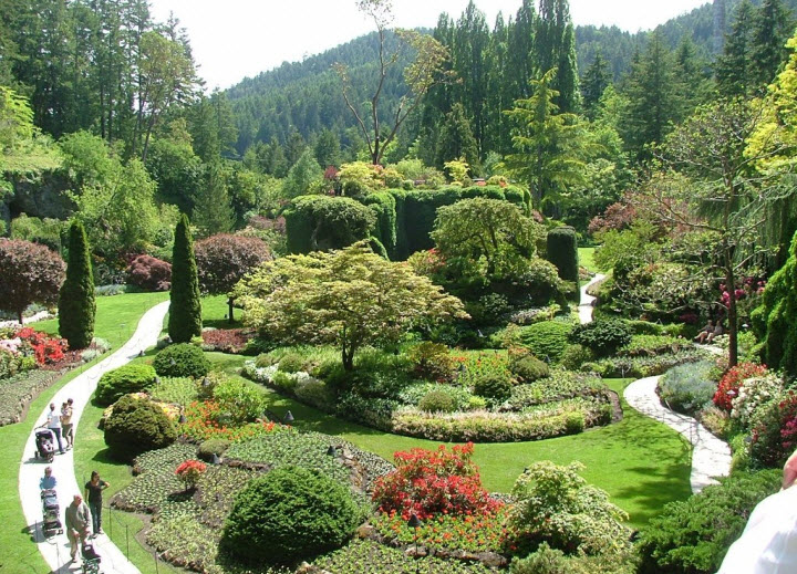 Anthrophysis bird feeding may have unintended side - Butchart gardens tour from victoria ...
