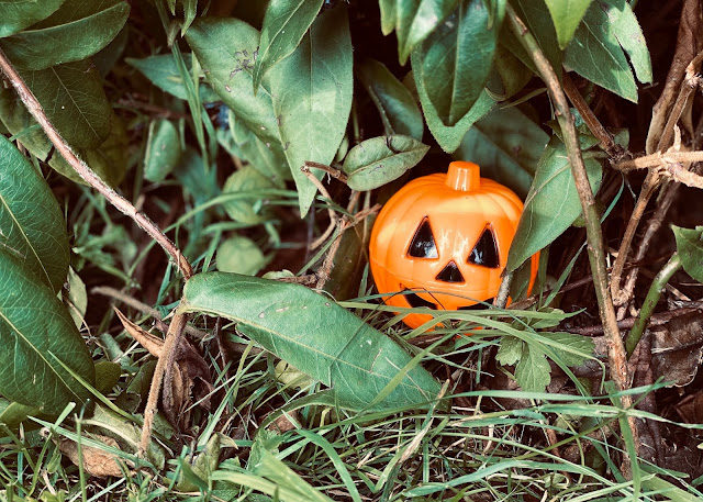 Setting up a halloween trick or treat hunt by hiding halloween treats around the garden for my children to discover