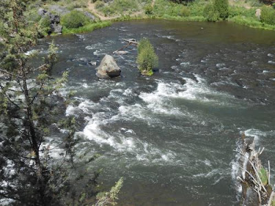 river, rapids, turbulent waters