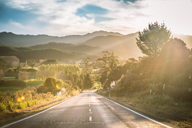 coromandel road golden light