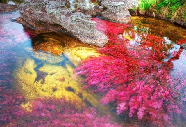 poze cel mai colorat rau din lume