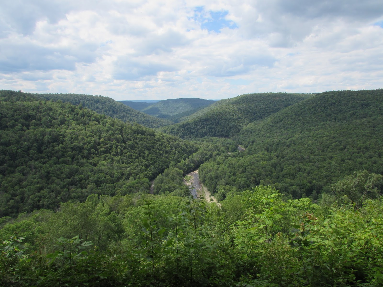 Worlds End State Park: Canyon Vista, Forksville Covered