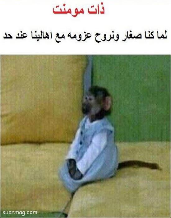 حالات واتس مضحكه مصريه 7   Egyptian funny WhatsApp status 7