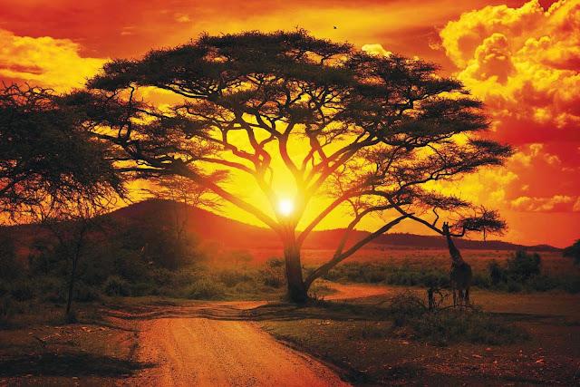 tempat wisata afrika selatan