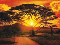 Afrika Selatan Nan Eksotis