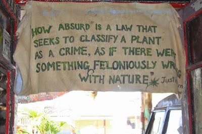 Marijuana -- it's just a plant after all ...