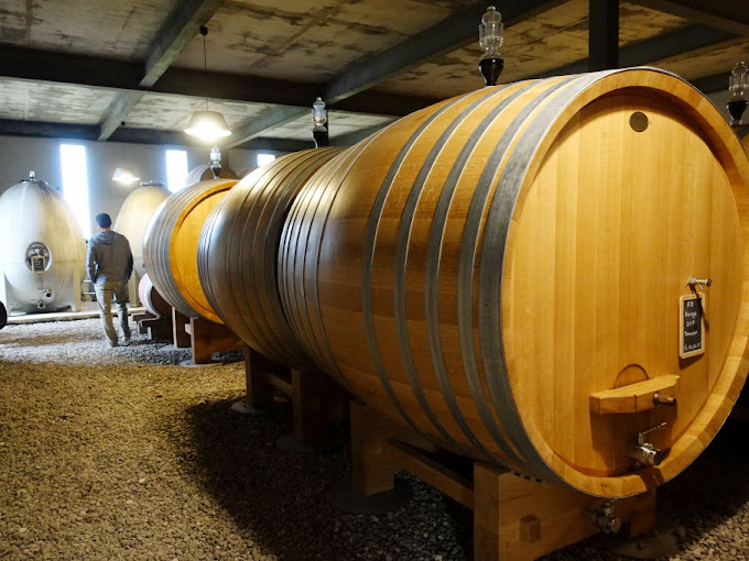 Domaine de Fondrèche - Concrete Eggs and Oak Barrels