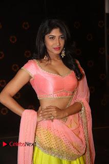 Actress Roshini Stills in Lehenga Choli at Saptagiri Express Audio Release  0073